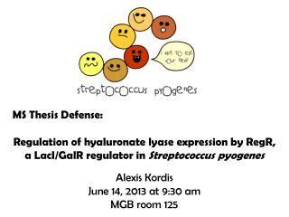 Dissertation proposal editing vs defense - azuripeninsulacom
